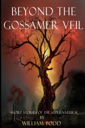 Beyond_the_Gossamer__Cover_for_Kindle