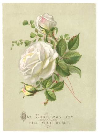 Christmas greetings card, 1885